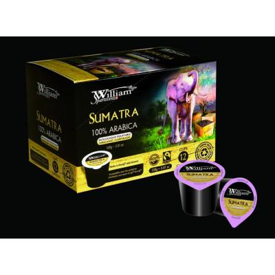 24 Dosettes William Sumatra Bio Équitable avec capsule recyclable